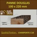 Panne / Poutre 100x220 Douglas prix au mètre