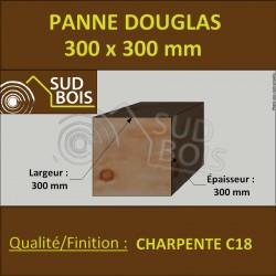 ↕ Panne / Poutre / Poteau 300x300 Douglas prix au mètre