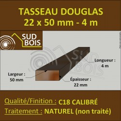 Tasseau 22x50mm Douglas Naturel Calibré 4m
