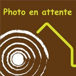 Poutre Madrier Sapin/Épicéa 100x220m 3m